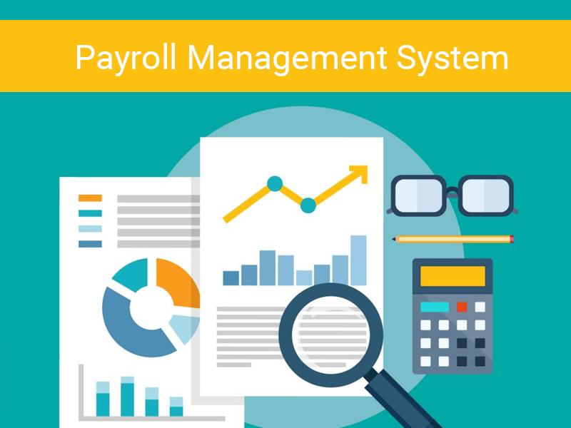 Payroll Software Development